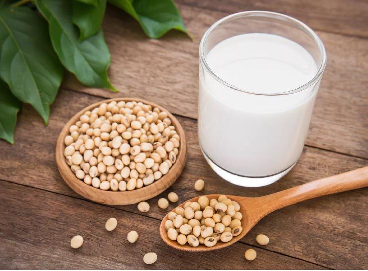 Liquid Soy Protein Market 2019   Global Forecast 2025   Top Key Players - Archer Daniels Midland, Cargill, Devansoy, Wirmal Intern