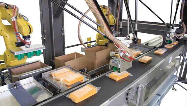 Food and Beverage Robotic System Integration