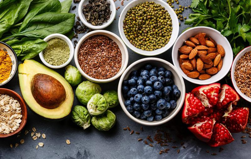 Meticulous Research Reveals how Plant Based Protein Market