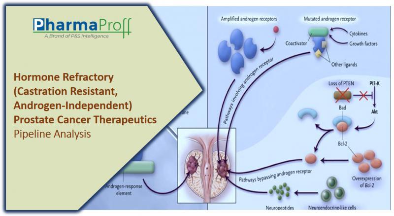 Hormone Refractory (Castration Resistant,