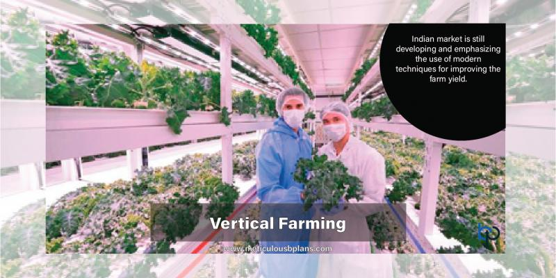 Vertical Farming Business