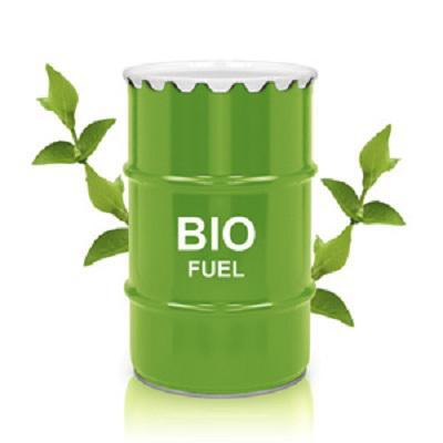 Biodiesel Fuel Market