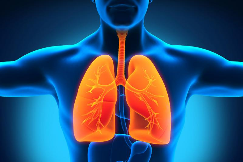 Lung Cancer Therapeutics Market Report Forecasting CAGR 12.4%