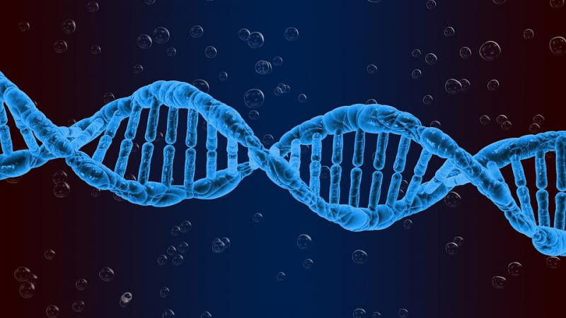 Viral Vectors and Plasmid DNA Manufacturing