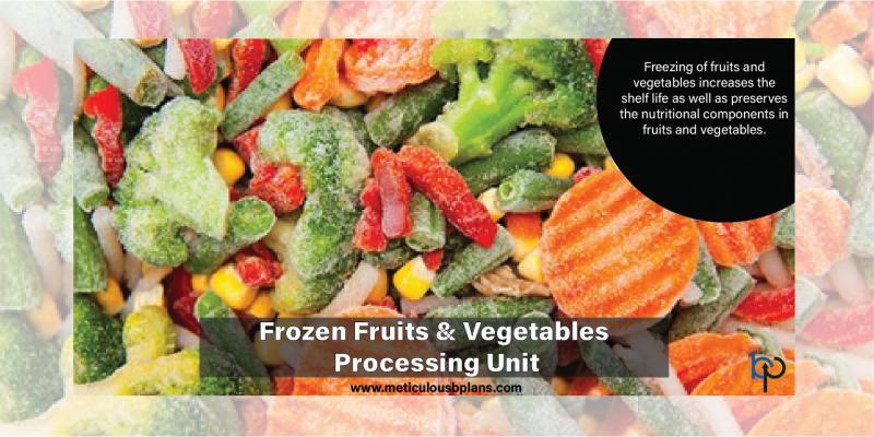 Frozen Fruits & Vegetable Processing Unit