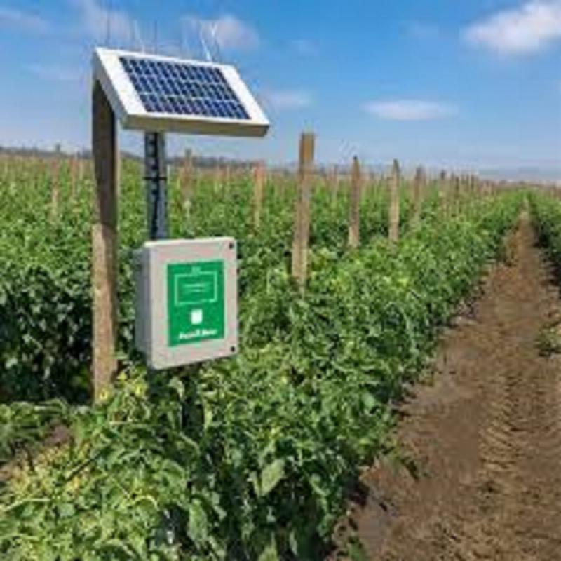 Soil Moisture Monitoring System