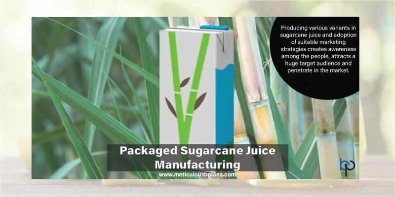 Packaged Sugarcane Juice Manufacturing Unit