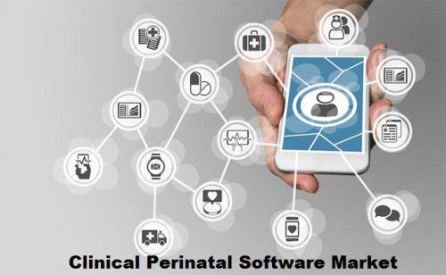 Global Clinical Perinatal Software Market