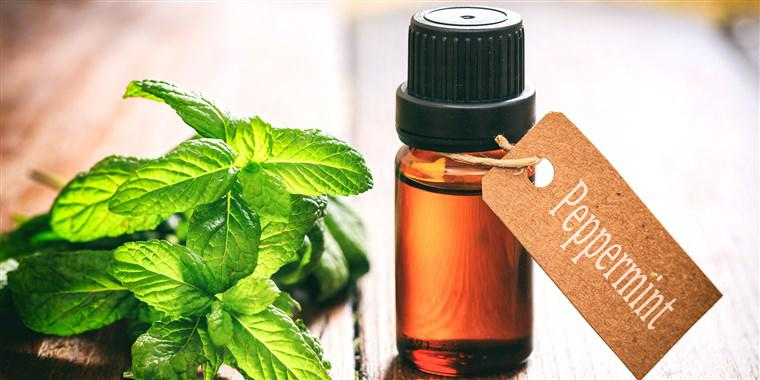 Peppermint Oil Market