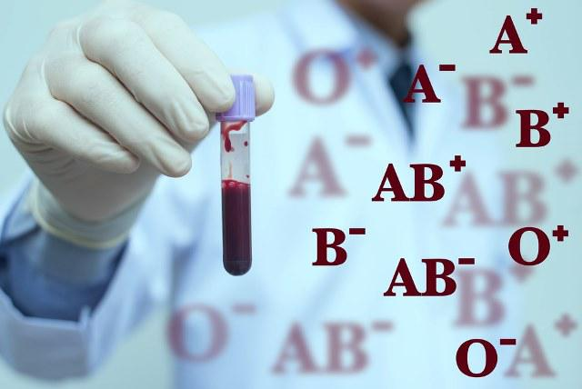 Blood Group Typing Market 2024 by Top Key Players are Immucor,