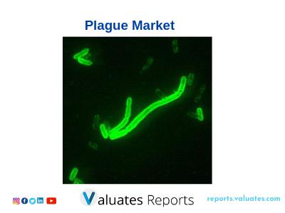 Global Plague Market Insight Epidemiology and Market Forecast