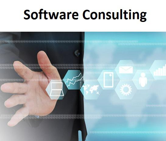 Software Consulting Market