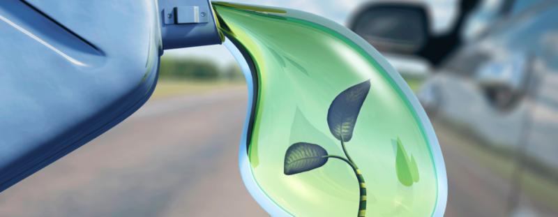 Bioethanol Market Overview