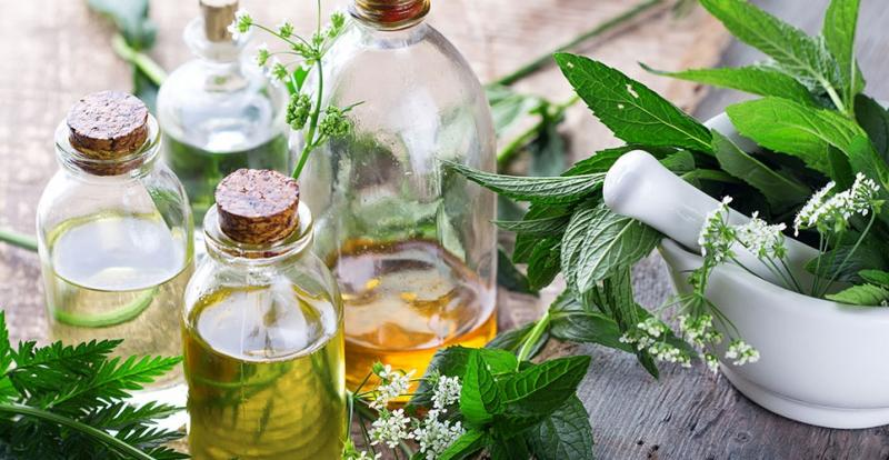 Herbal Beauty Products Market 2019 | Global Forecast 2025 | Top