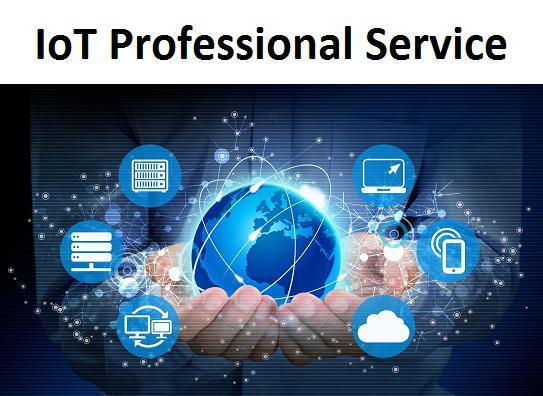 Image result for IoT Professional Service