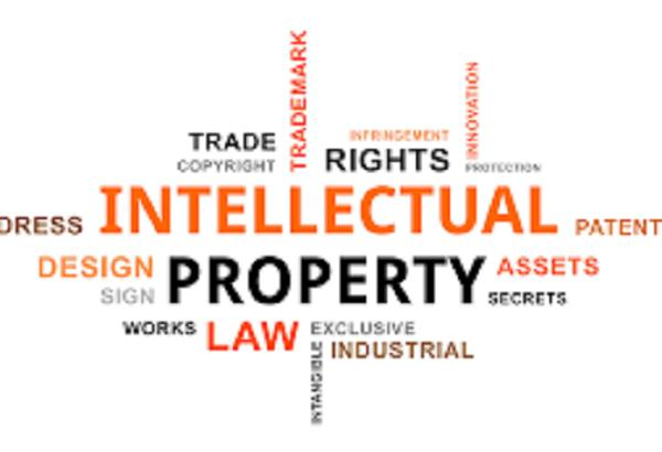 Intellectual Property Rights & Royalty Management