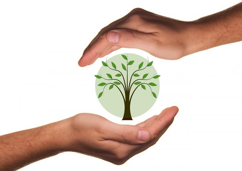 Biological Crop Protection (Bio-Pesticide) Market BASF SE,