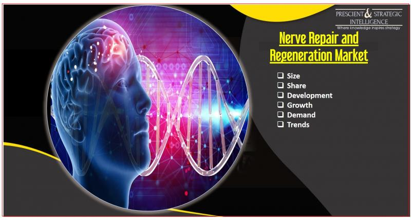 Nerve-Repair and Regeneration Market Research Report