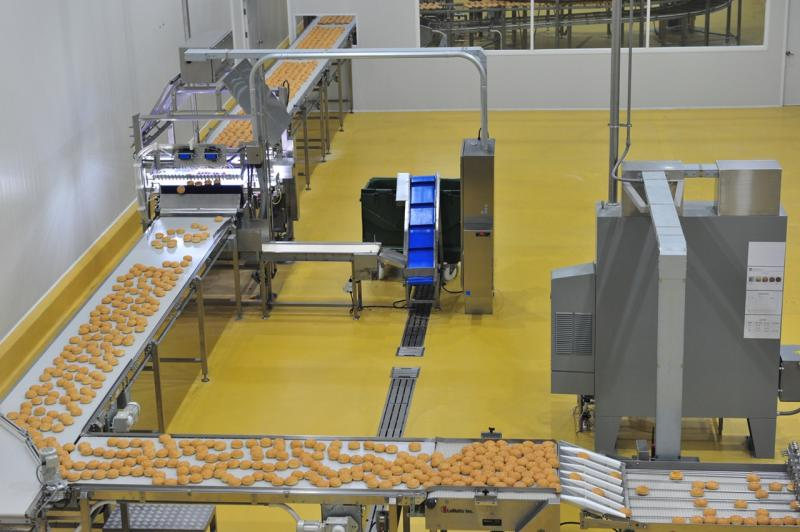 Southeast Asia Food Processing Equipment Market