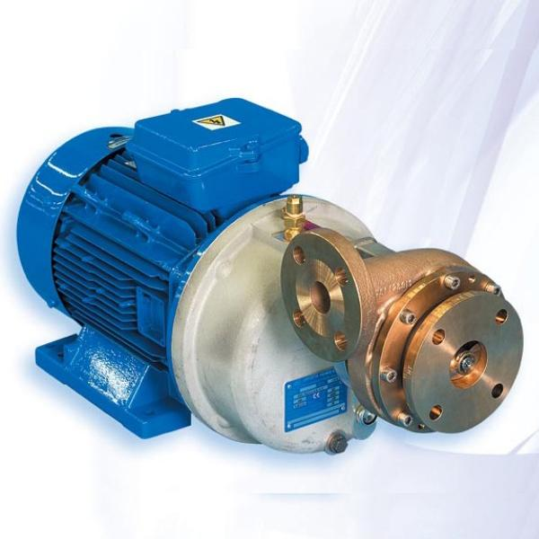 Cryogenic Pump Market – Smart Strategies of the Research