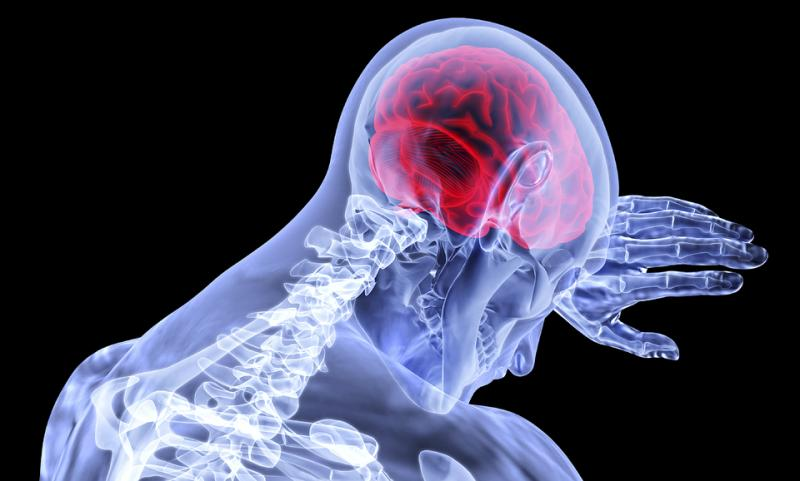 What's Driving The Brain Mapping Instruments Market Trends?