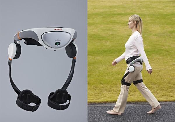 Global Walking Assist Devices Market