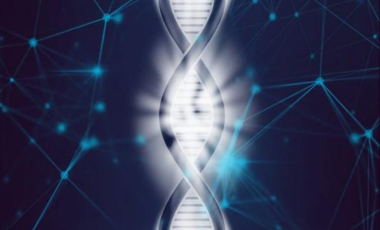 Single Cell Genome Sequencing