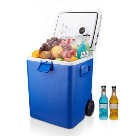 Portable Mini Fridge Market