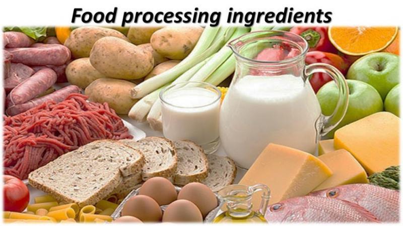 Food Processing Ingredients Market