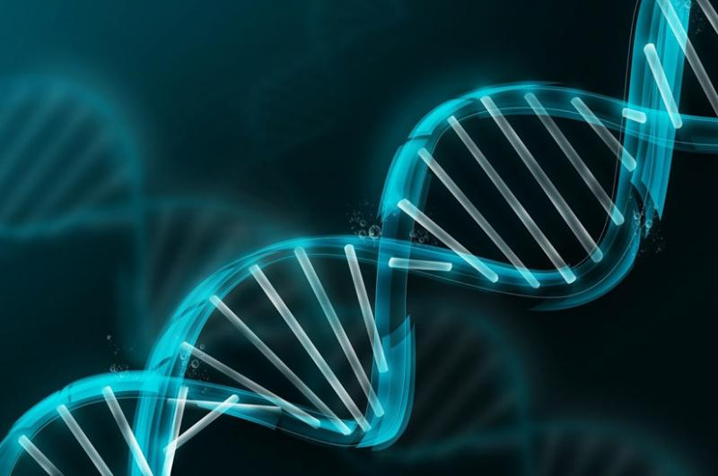 Cell and Gene Therapy Market