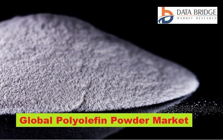 Global Polyolefin Powder Market