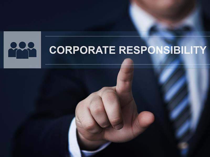 Global Sustainability & Corporate Responsibility Consulting