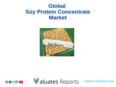Global Soy Protein Concentrate Market Outlook, Trends, Share