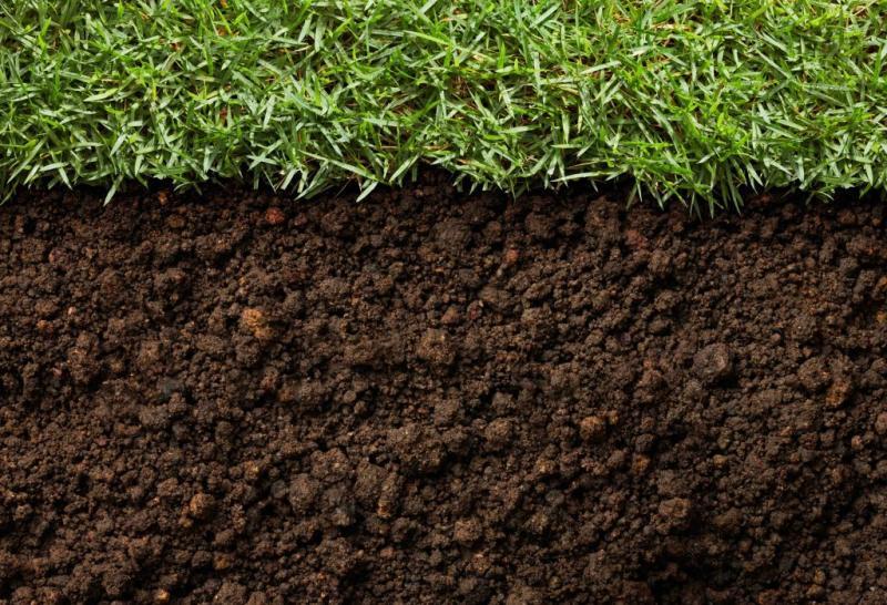 Soil Penetrant Market