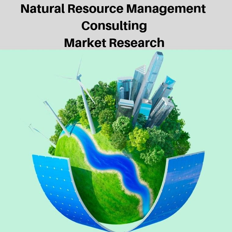 Global Natural Resource Management Consulting Market, Top key