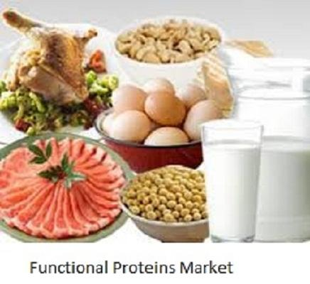 Functional Proteins Market