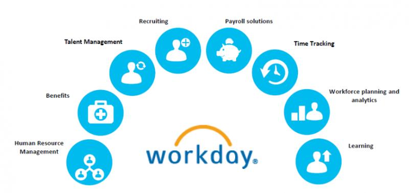 Global Workday Human Capital Management Service Software