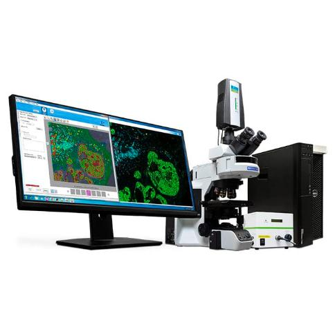 Macroscopic Imaging Workstations Market: Competitive