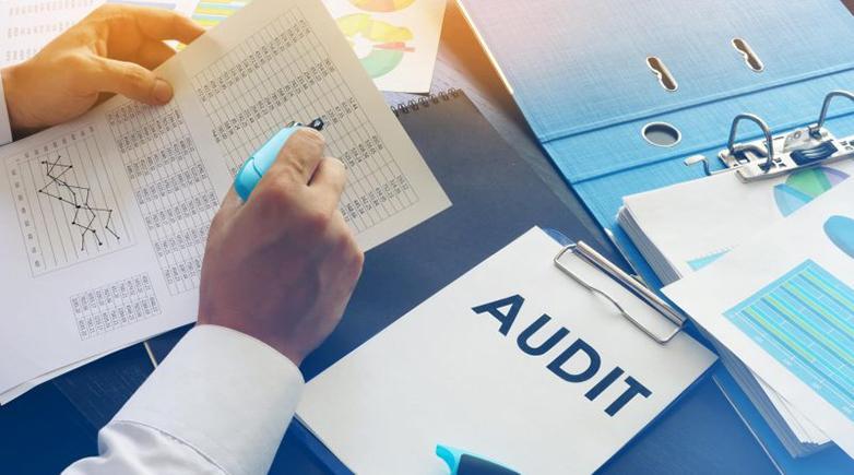 Business Audit Service Market