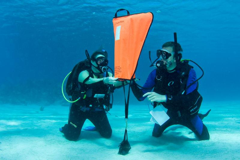 Global Underwater Lift Bags Market Growth 2019-2024