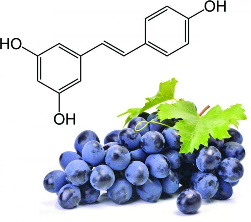 Resveratrol Market
