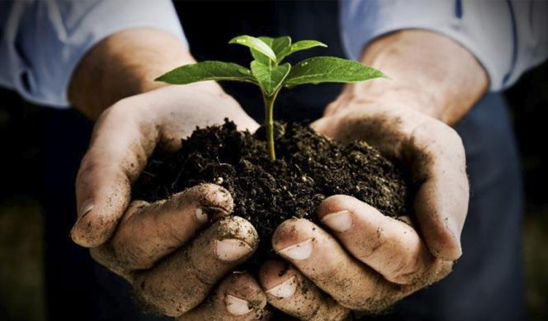 Global Soil Conditioners Market