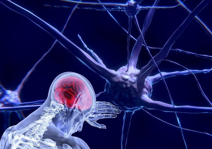 Neuroscience Market