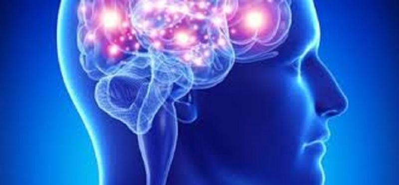 Brain Mapping Instruments Market Qualitative Analysis Reveals