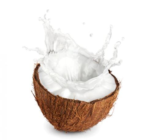 Global Coconut Extracts Market to Witness a Pronounce Growth