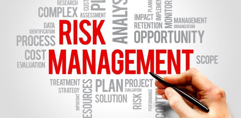 Risk Management In Insurance Market