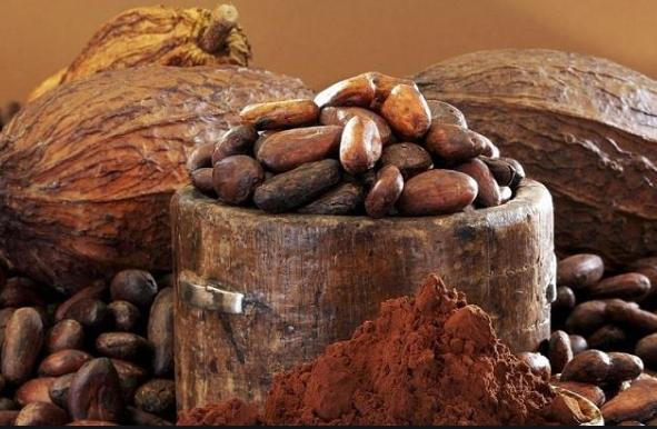 Cacao Husk Pigment Market Size, Share, Development by 2024