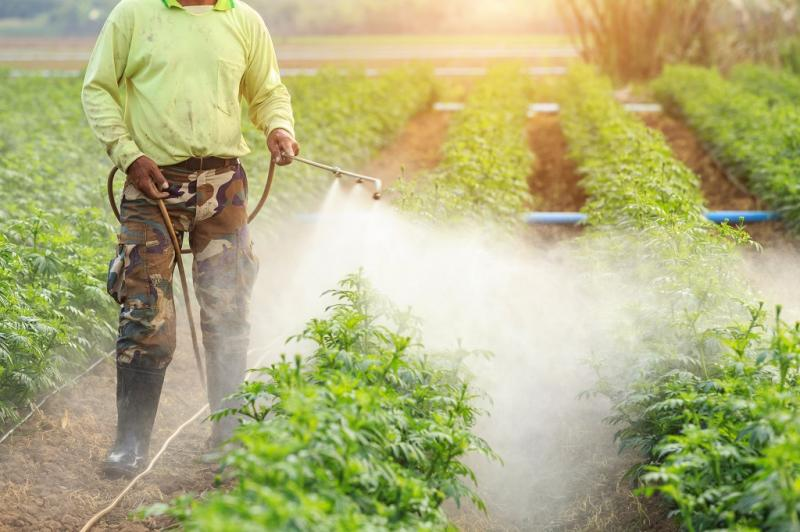 Synthetic Pesticide Inert Ingredient Market: Competitive