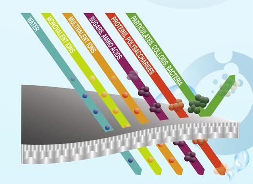 Micro-Filtration Membrane Market: Competitive Dynamics &