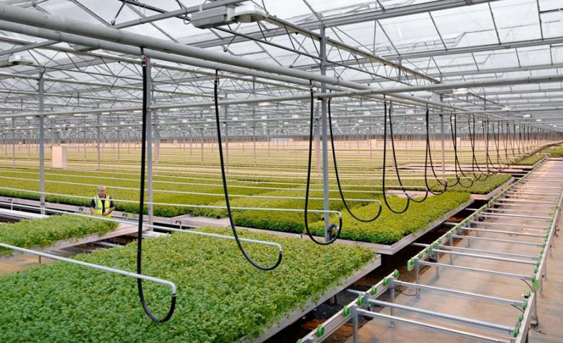 High Technology Greenhouses Market